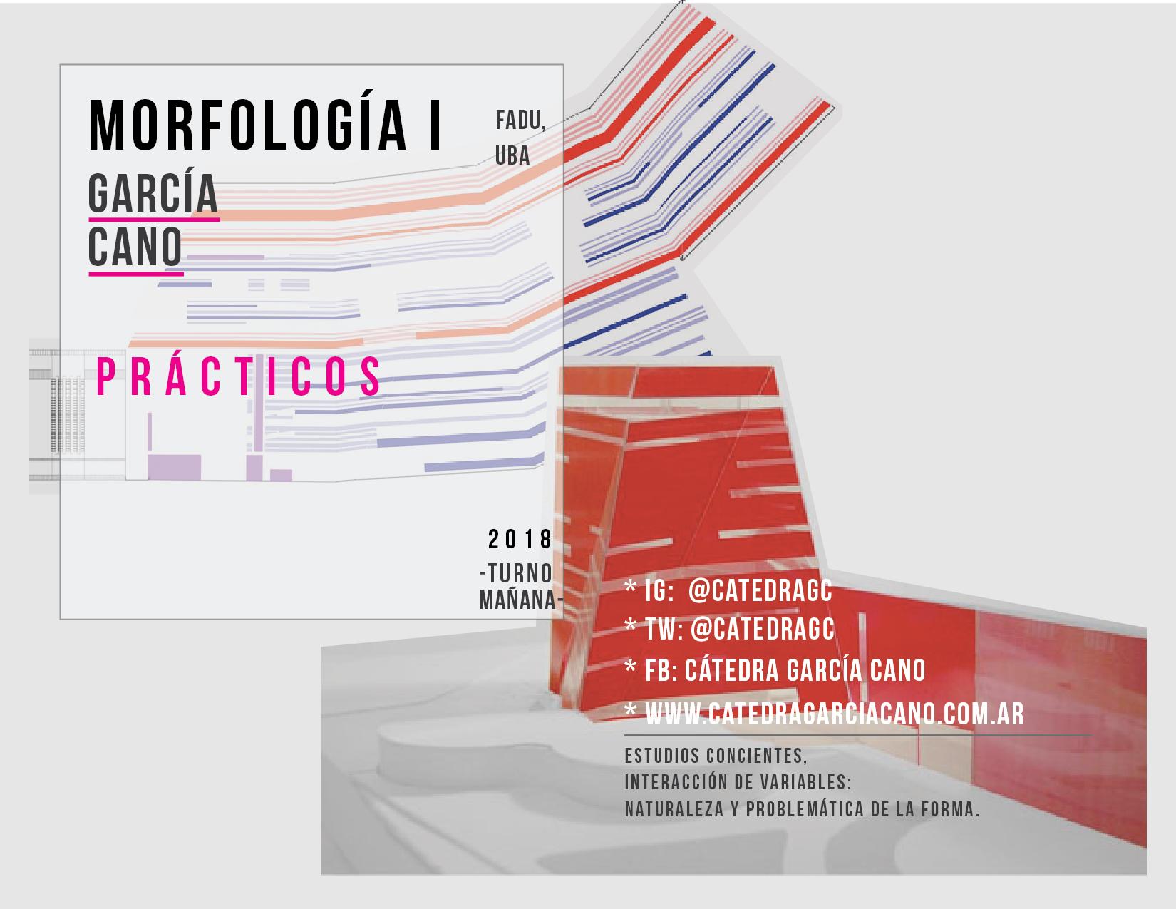afiche-catedra-18_morfo-1_practicos-02-04